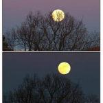 Fotografía Evolución Luna llena